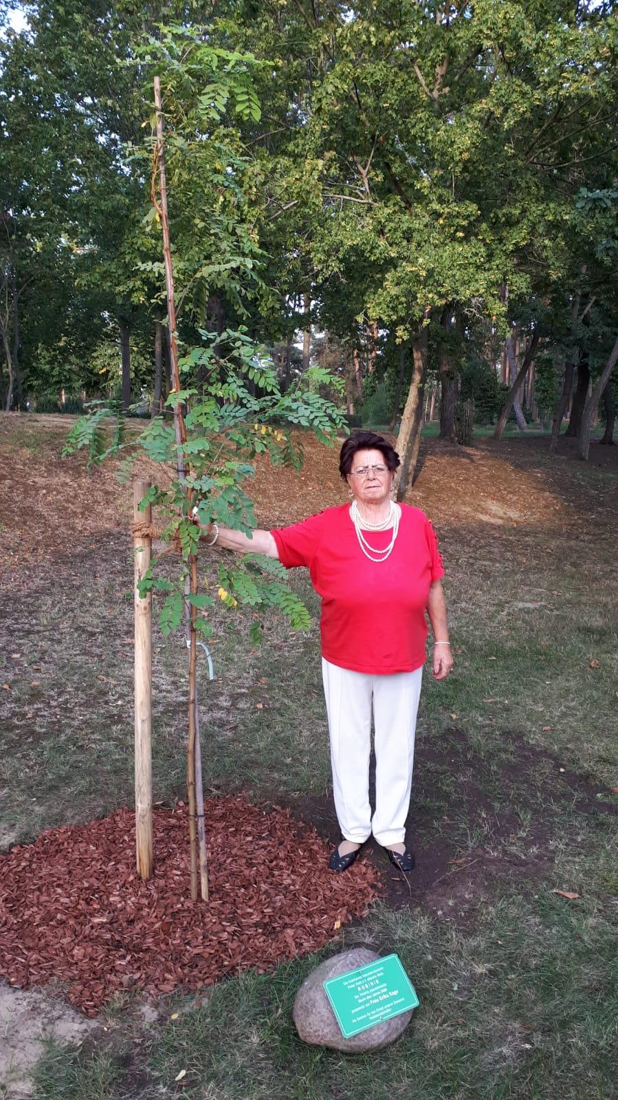 Frau Kake die Spenderin der Robinie 2020